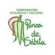 Corporación Penca de sábila (Colombia)